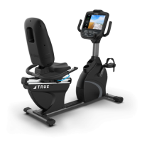 TRUE Recumbent Bike C900